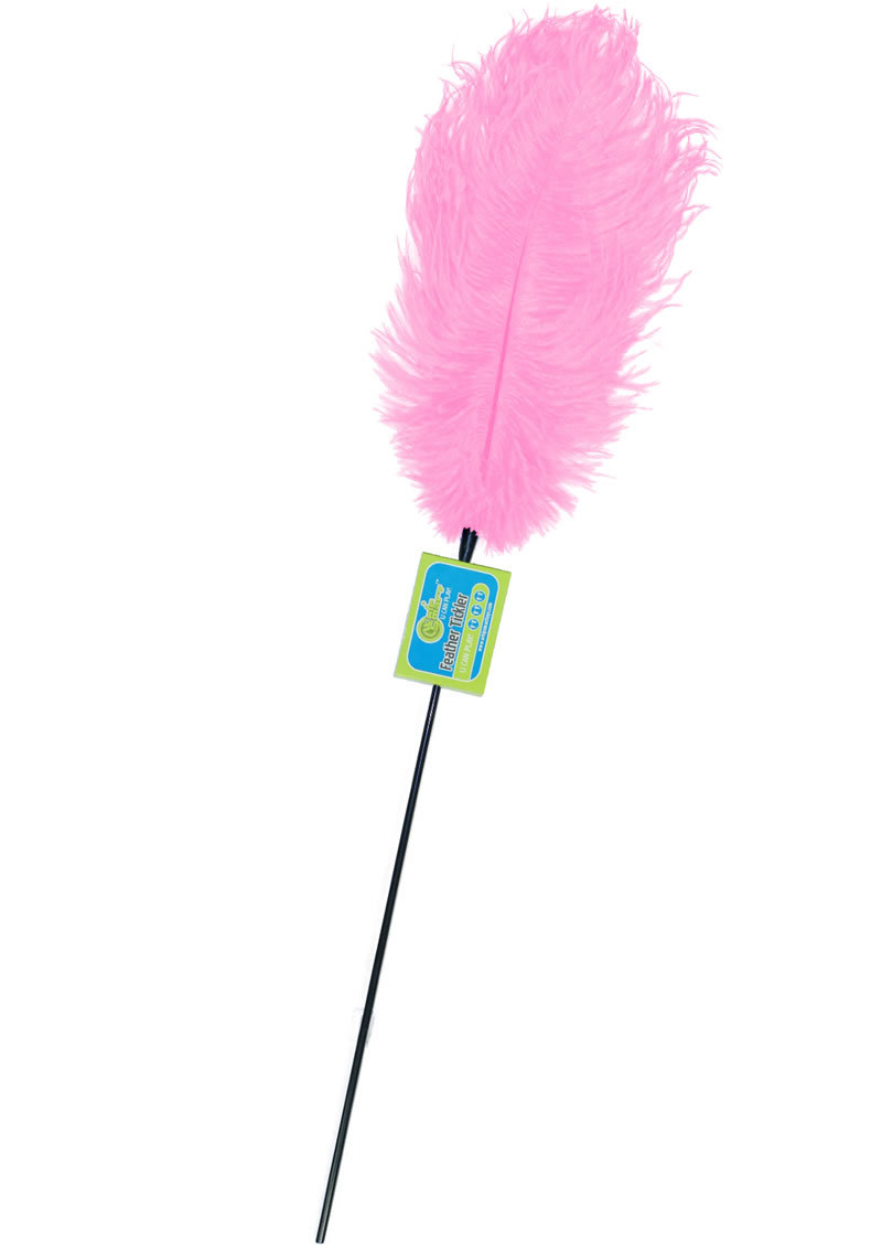 Whip Smart Feather Tickler Kinky Pink